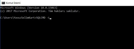 SQL Server'da Server Name Bulmak