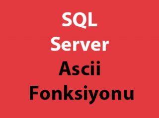 SQL Server Ascii Fonksiyonu