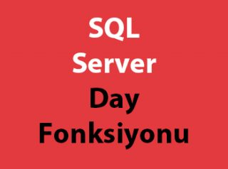 SQL Server Day Fonksiyonu
