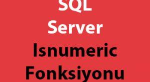 SQL Server Isnumeric Fonksiyonu