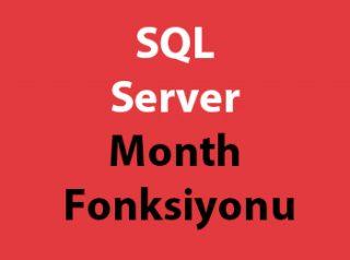 SQL Server Month Fonksiyonu