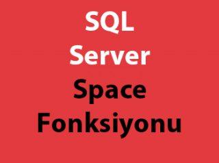 SQL Server Space Fonksiyonu