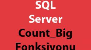 SQL Server Count_Big Fonksiyonu