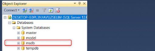 SQL Server'da Msdb Veritabanı