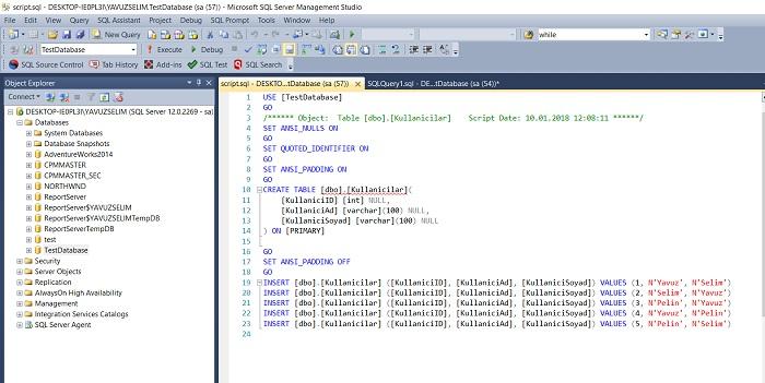 SQL Server'da Bir Tablonun Scriptini Almak