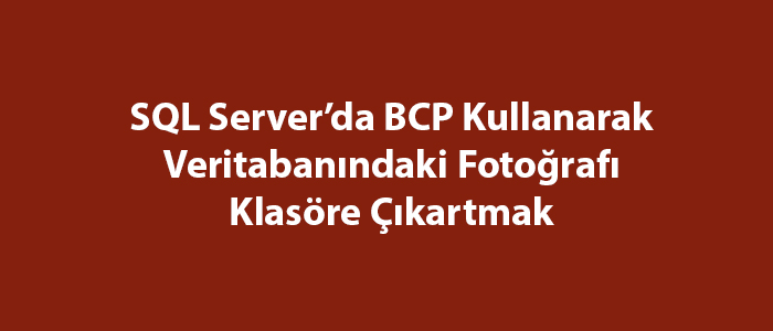 SQL Server'da BCP Kullanarak Veritabanındaki Fotoğrafı Klasöre Çıkartmak